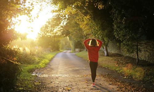 朝散歩の画像